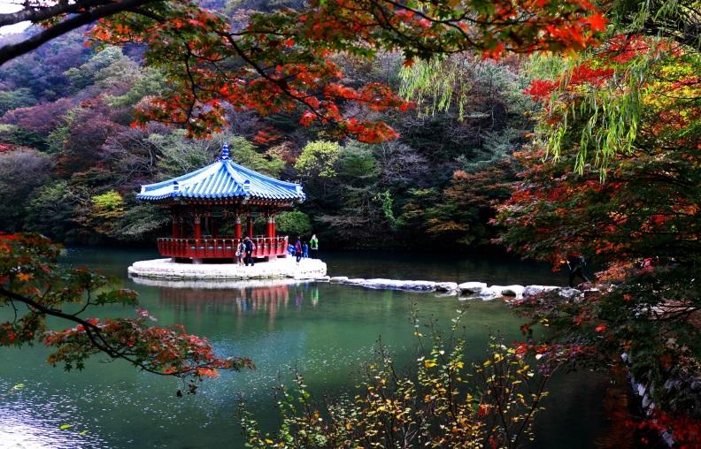 Naejangsan fall foliage